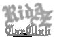 RidAz Car Club avatar
